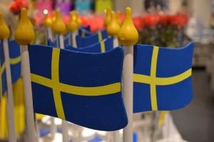 Professionaalsed rootsi keele tõlkijad